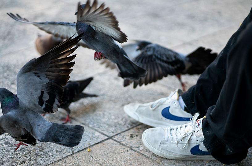 Nike SB x Polar Skate Co